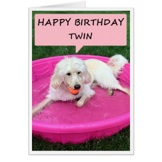TWIN BIRTHDAY GREETINGS FROM DOG IN SWIMMING POOL CARD