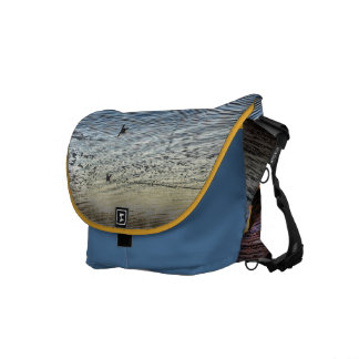 Twin Boats Courier Bag