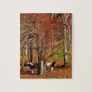 Twin Brown and White Horses Jigsaw Puzzle