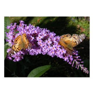 Twin Butterflies ~ ATC Large Business Cards (Pack Of 100)