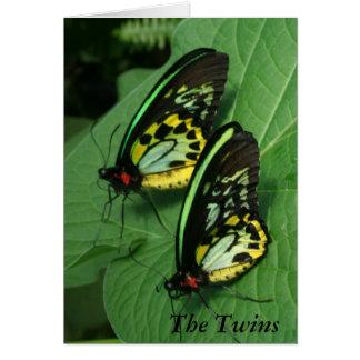 Twin Butterflies Card
