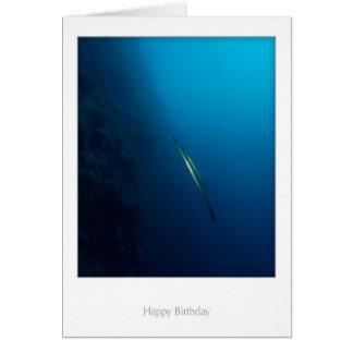 Twin Cornette Fish Birthday Card