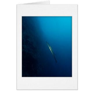 Twin Cornette Fish Greeting Card