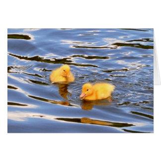 Twin Ducklings Card