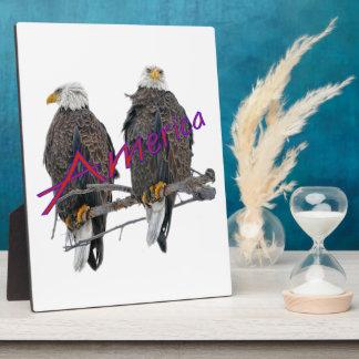 Twin Eagles America Plaque