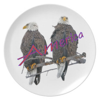 Twin Eagles America Plate