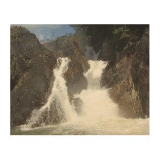 twin falls in San Ignacio Belize Wood Print