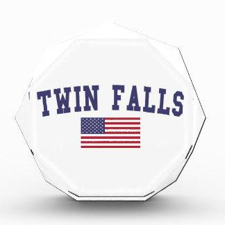 Twin Falls US Flag Award