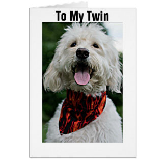 TWIN-FOR YOUR BIRTHDAY I GET DRESSED JUST FOR YOU CARD