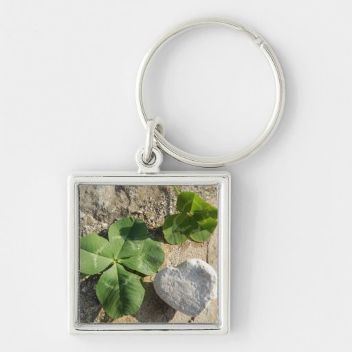Twin Four Leaf Clover Irish Luck St. Patrick's Day Key Chains