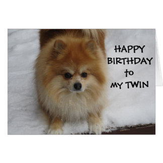 """TWIN"" HAPPY BIRTHDAY SAYS THE POMERANIAN CARD"