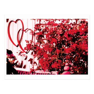 Twin Hearts Postcard