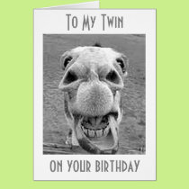 TWIN-HEE HAW YOU ARE A YEAR OLDER-BIRTHDAY HUMOR CARD