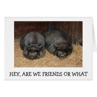 TWIN HOGS ASK ARE WE FRIENDS OR WHAT BIRTHDAY CARD