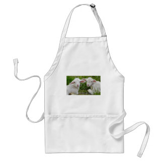 Twin Lamb Baby Animal Thinking Of You Aprons