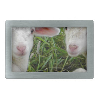 Twin Lamb Baby Animal Thinking Of You Belt Buckles
