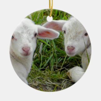 Twin Lamb Baby Animal Thinking Of You Double-Sided Ceramic Round Christmas Ornament