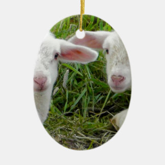 Twin Lamb Baby Animal Thinking Of You Double-Sided Oval Ceramic Christmas Ornament