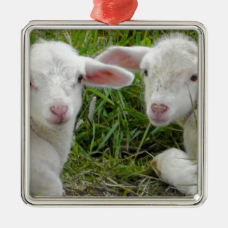 Twin Lamb Baby Animal Thinking Of You Square Metal Christmas Ornament
