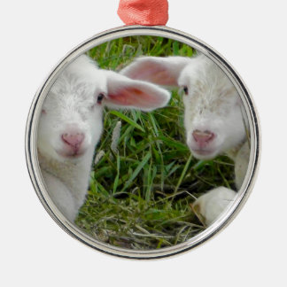 Twin Lamb Baby Animal Thinking Of You Round Metal Christmas Ornament