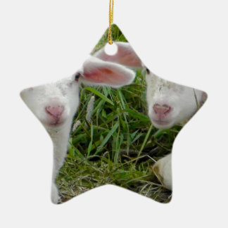 Twin Lamb Baby Animal Thinking Of You Double-Sided Star Ceramic Christmas Ornament