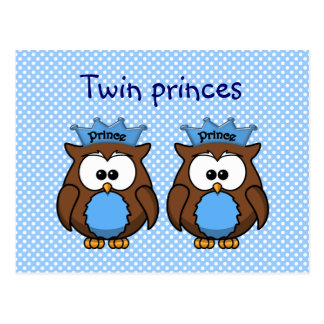 twin owl princes post card