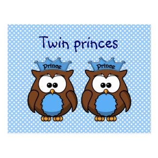 twin owl princes postcard