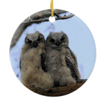 Twin Owls - Ceramic Ornament