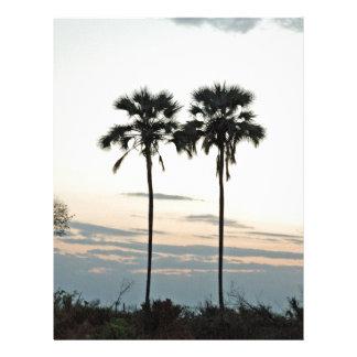 Twin Palms Botswana TomWurl .jpg Letterhead