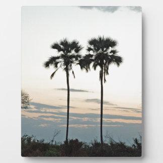 Twin Palms Botswana TomWurl .jpg Plaque