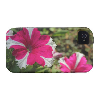 Twin pink flowers case for the iPhone 4