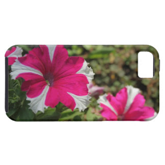 Twin pink flowers iPhone 5 cases