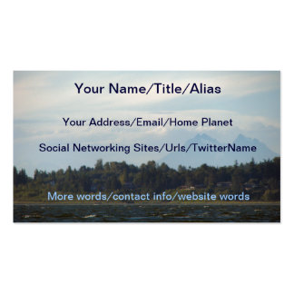 TWIN SISTERS BUSINESS CARD