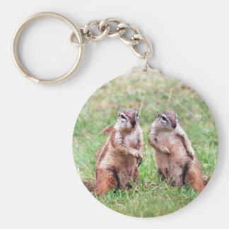 Twin squirrels basic round button keychain
