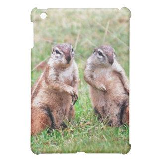 Twin squirrels iPad mini cases