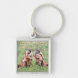 Twin squirrels Silver-Colored square keychain