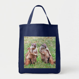 Twin squirrels tote bag