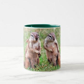 Twin squirrels Two-Tone coffee mug