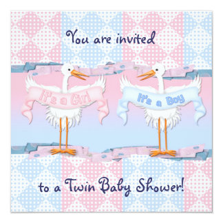 Twin Storks for Baby Shower Invitation