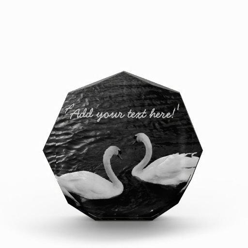 Twin Swans Award