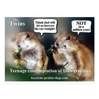 Twin teens postcard