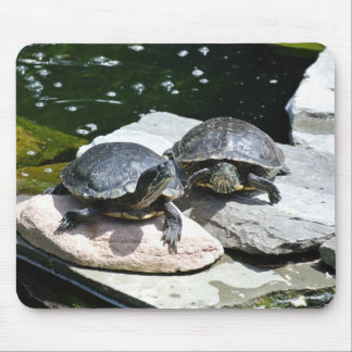 Twin Turtles - Mouse Pad