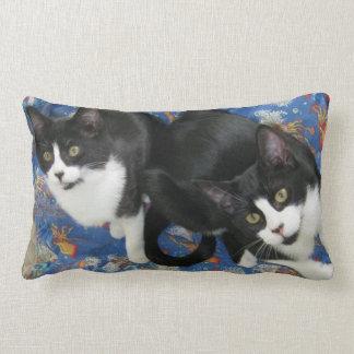 Twin Tuxedo Kittens Throw Pillow