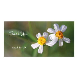 Twin White Flowers Picture Card