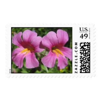 Twin Wildflowers Stamp