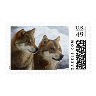Twin Wolves_Stamp Postage
