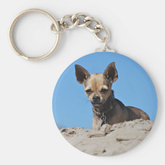 Twinkie Is Relaxing In The Sun Basic Round Button Keychain