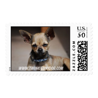 TWINKIE TINY DOG POSTAGE