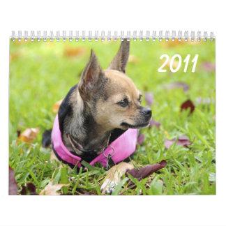 Twinkie's Chihuahua Calendar 2011