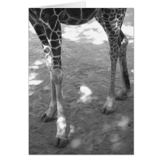 twinkle toes greeting cards